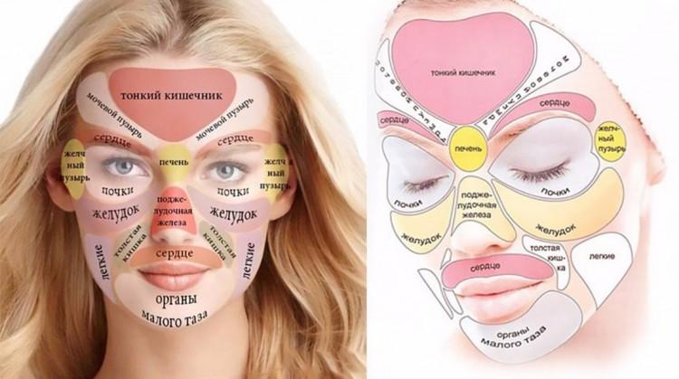 проблемные органы и области прыщей на лице