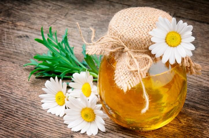 цветочный мед, ромашки