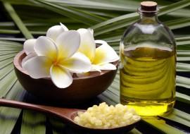 Масло чайного дерева – эффективное и натуральное средство от прыщей